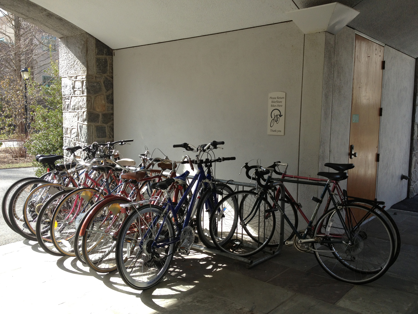 yenny - bikeshare1_web image