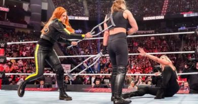 Exploring the WWE Elimination Chamber 2019